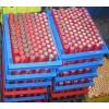 电池组回收,软包电池组回收,圆柱电池组回收,动力电池组回收